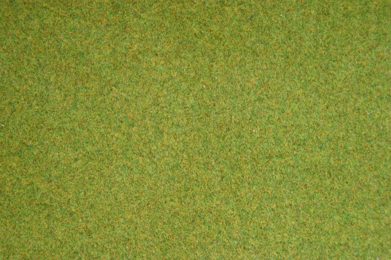 Wiesen-Matte Frühlingswiese