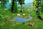 Moorweiher mit Grasbüscheln
