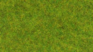 Streugras Frühlingswiese