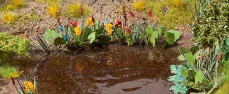 Wasser- und Uferpflanzen