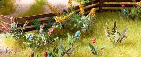 Feld- und Wiesenpflanzen