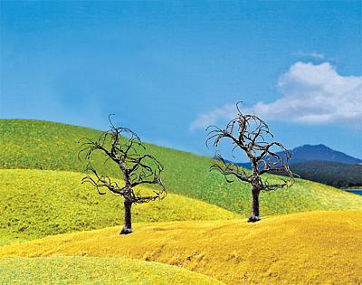 2 Premium Kahle Bäume