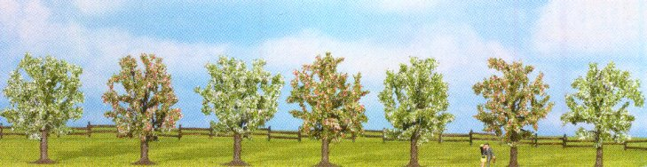 Obstbäume