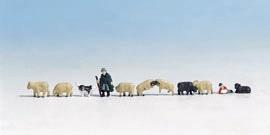 Schäfer und Schafe