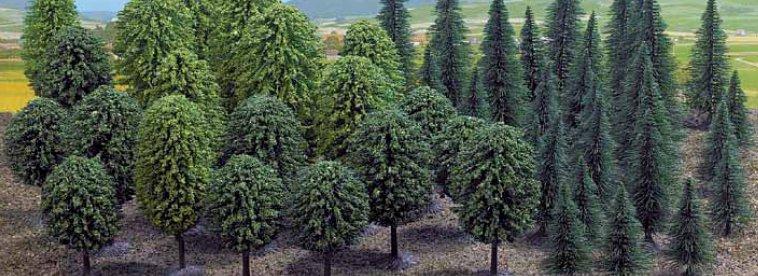 Mischwald mit 50 Bäumen