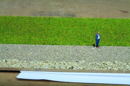 Grasmischung Sommerwiese