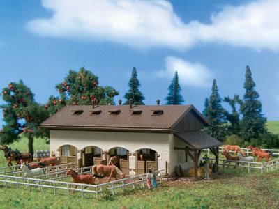 Pferdekoppel mit Pferden