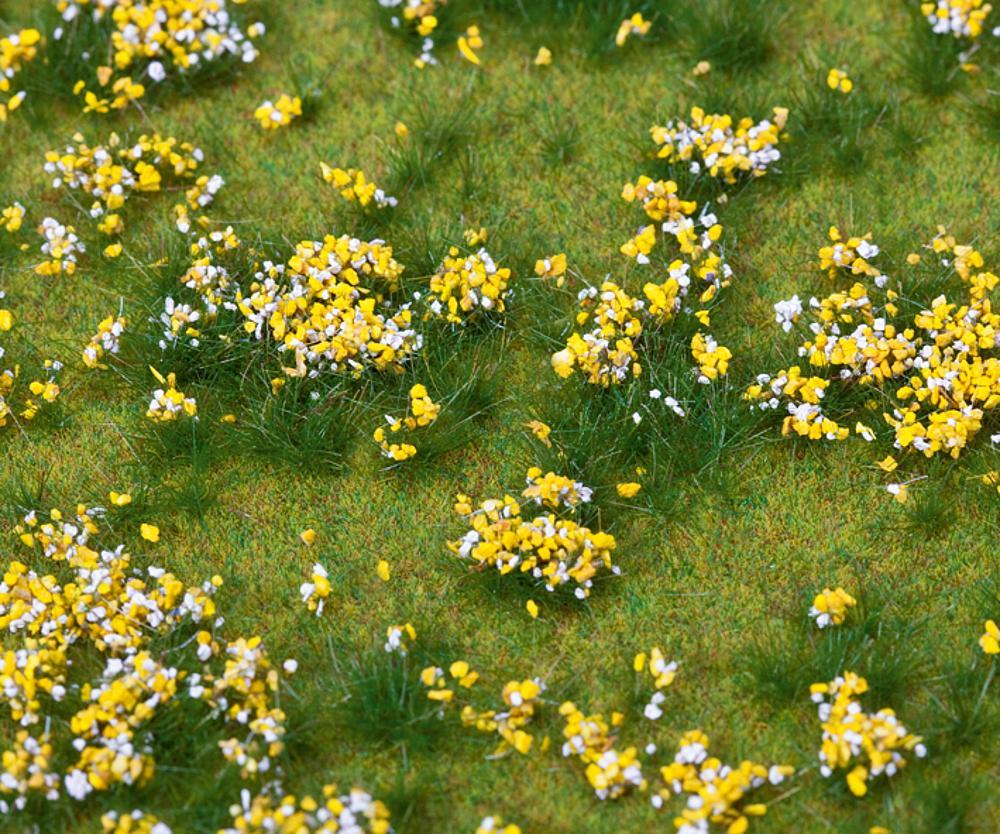 Landschafts-Segment Blumenwiese, bunt