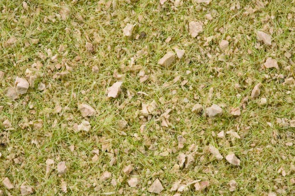 Grasmischung Almwiese (100g Dose)
