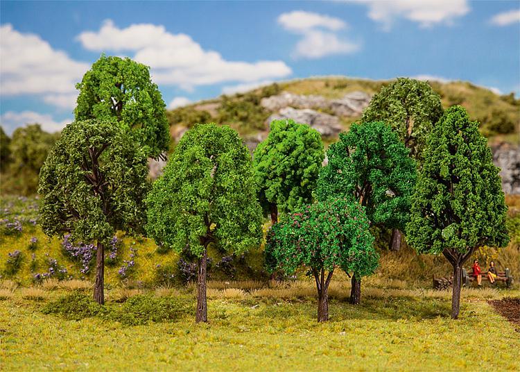 20 Mischwaldbäume, sortiert