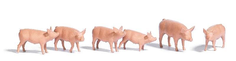 Schweine-Set