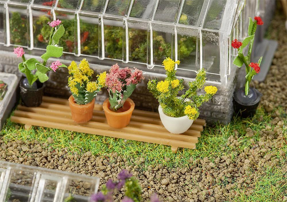 6 Topfpflanzen