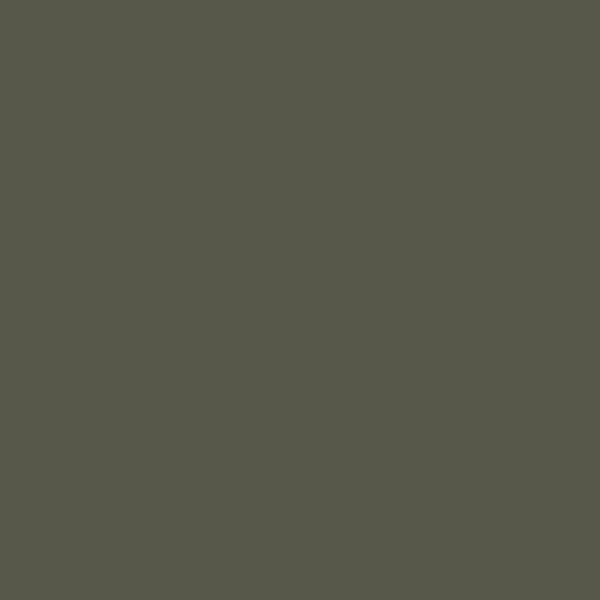 US Dunkelgrün, matt