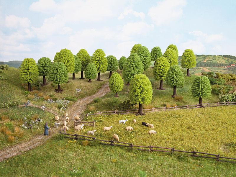 Laubbäume, 10 Stück