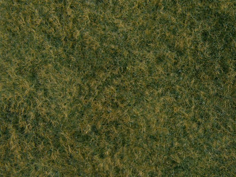 Wildgras-Foliage, hellgrün