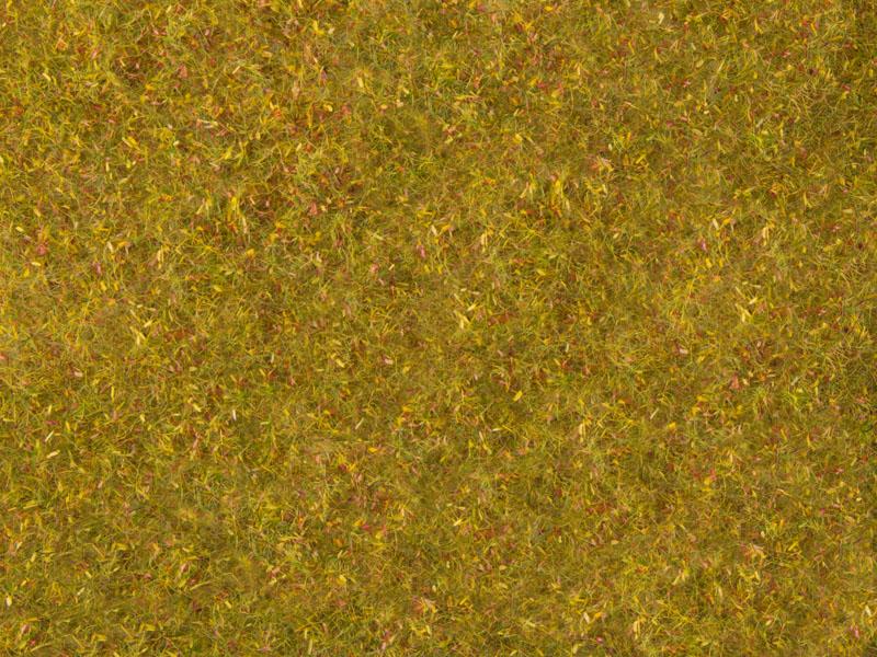 Wiesen-Foliage, gelb-grün