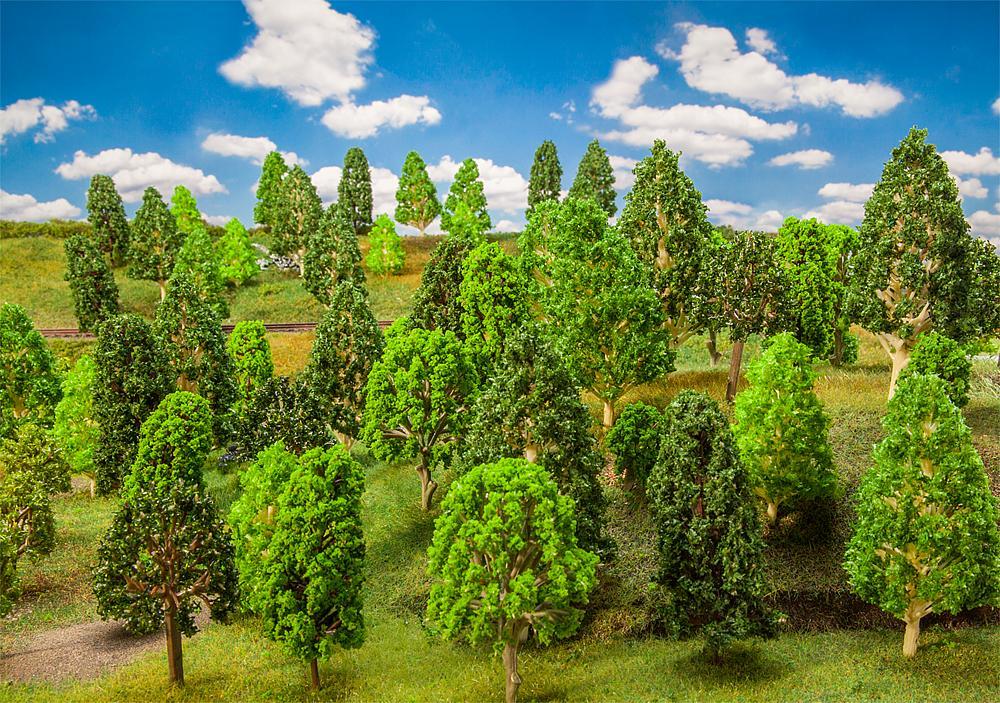 50 Laubbäume, sortiert