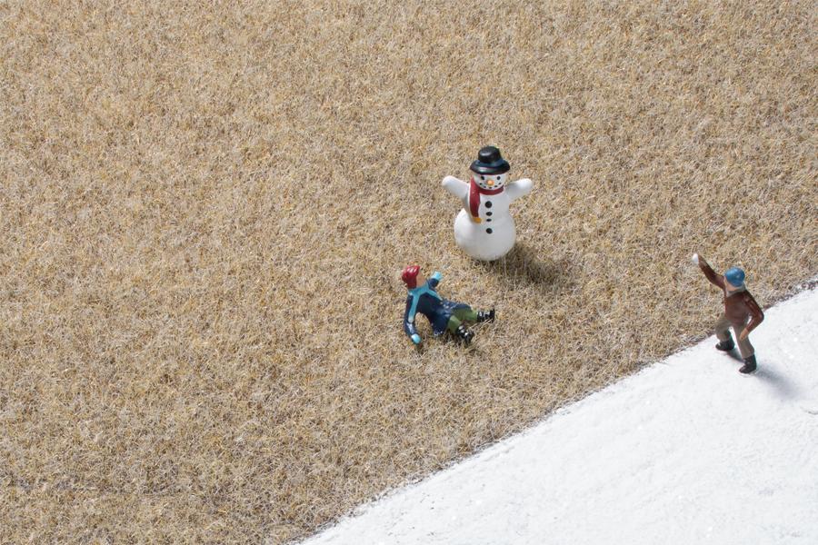 Grasfasern Wintergras