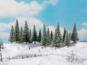 Schneetannen, 6 Stck.
