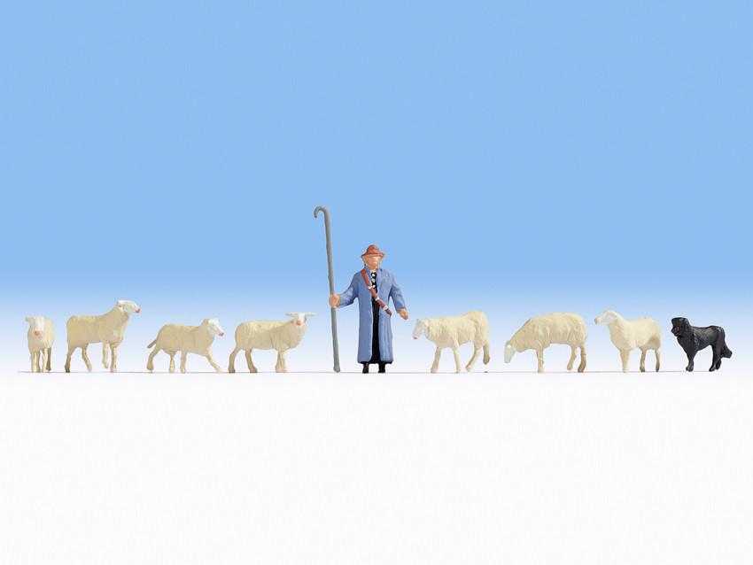Schafe und Schaefer