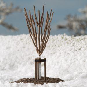Junge Baeume Winter (10 Stck.)