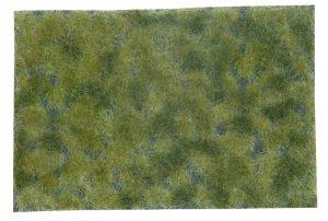 Bodendecker-Foliage mittelgruen