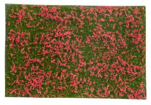 Bodendecker-Foliage Wiese rot